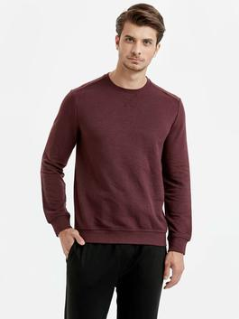 Plum - Sweatshirt